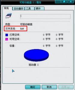 U盘文件系统各县显示为RAW