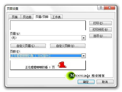 Excel的页码设置里面还可以插入图片哦