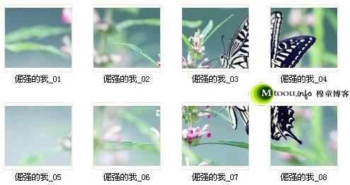 看,这就是手机QQ名片背景图片